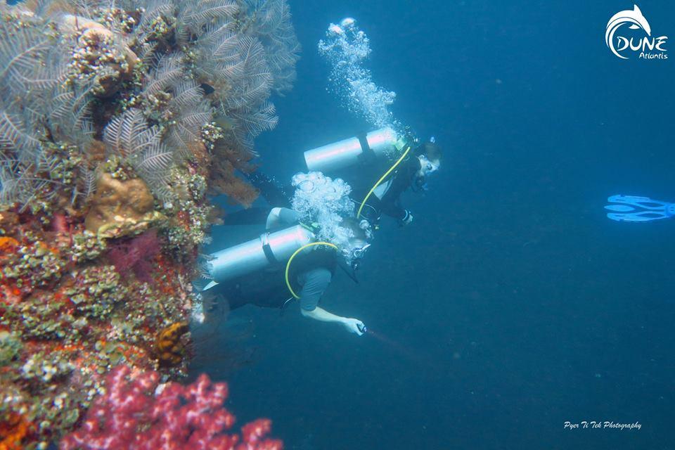 Plongée bali tulamben: les grandes découvertes à réaliser sous l'eau