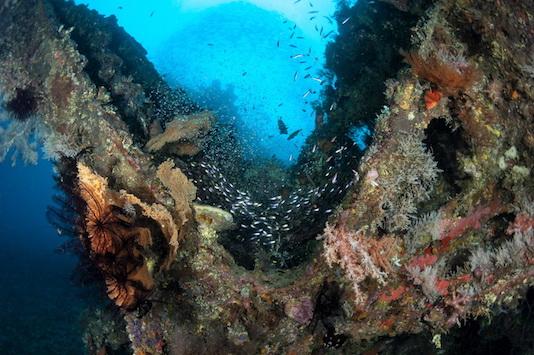 tulamben wreck diving in bali